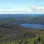 Panoramic from the fire tower