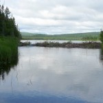 Beaver Dam on Tupper Lake