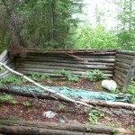 Remains of log house at Maple Mountain trailhead