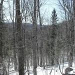 Winter photo of Marne Peak Ridge