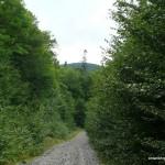 Mile 67 Road