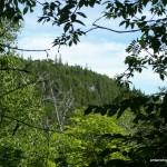 Marne Peak