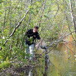 Dan crossing the beaver dam