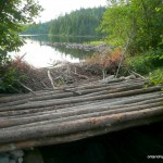 ATV bridge by Hamlow / Little Scarecrow Lake