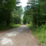 Dirt Road - Hunt Camp Lane / Power Line Road