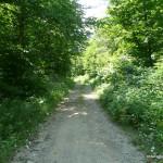 ATV road
