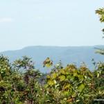 Hazy view towards Griffin Lake Peak