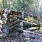 Remains of trapper's log cabin at east shore of Cobre Lake
