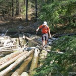 Crossing the Log Jam
