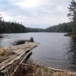 Gervais Lake