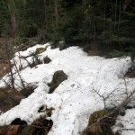 Snow along Otterpaw Creek
