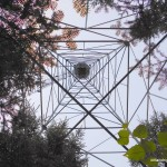 Underneath the Aldina Fire Tower