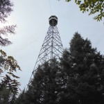 Aldina Fire Tower