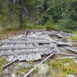 Fire Tower Debris