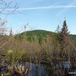 Shallow beaver pond / Ghost Range Peak