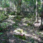 Left turn onto trail to Ghost Range Peak