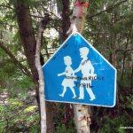 "Sign: ""Ishpatina Ridge Trail - Pink to the Peak"""